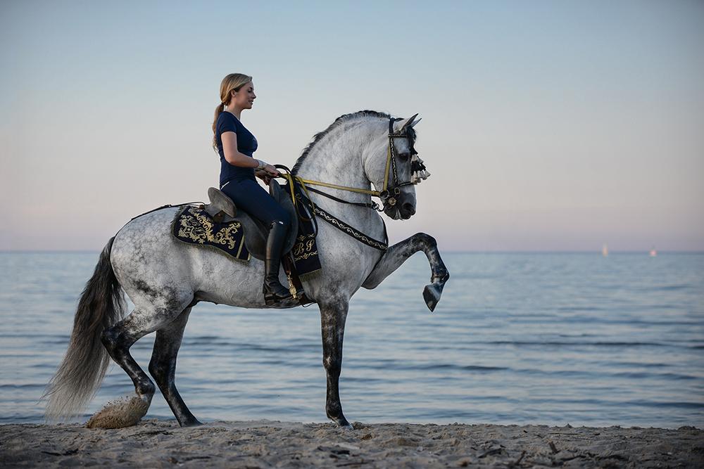 Konie. Pasja od pokoleń <br> Karolina Ferenstein- Kraśko